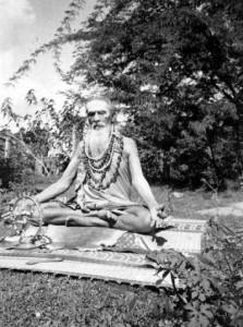 shuddhanada-bharati