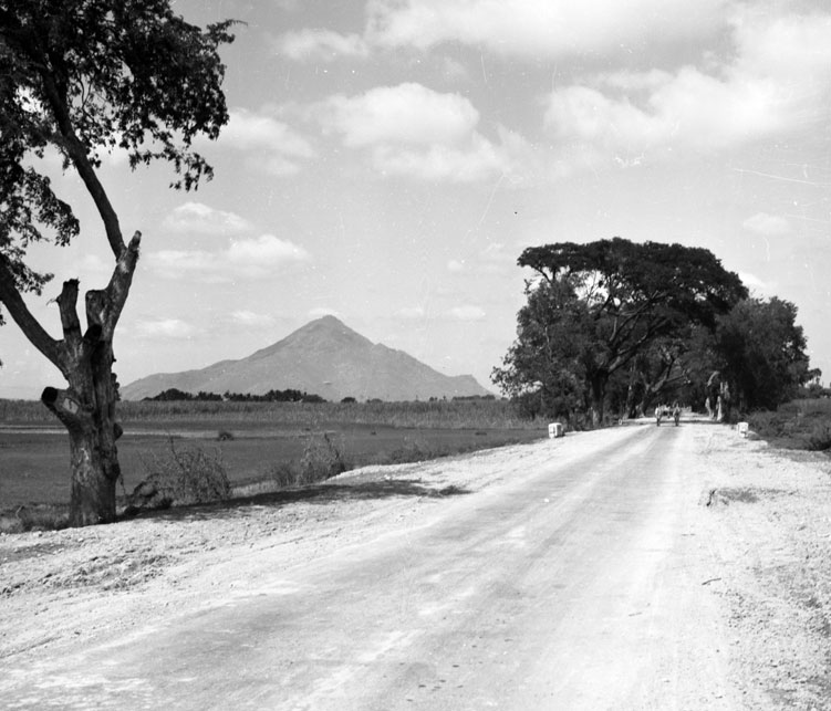 Approaching Arunachala in the 1960s, about 15 km from Tiruvannamalai on the Tindivanam road.